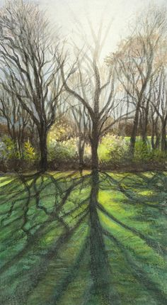 Forest Sunshine Giclee Fine Art Print on Archival by PoofyDove,