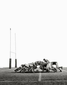 Rugby by Daniel D'Ottavio / Silas Finch Rugby Sport, Rugby Club, Rugby Men, Rugby League, Rugby Players, Photo Rugby, Rugby Poster, Rugby Quotes, Rugby Girls