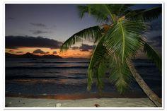 Sunset at Anse Severe La Digue// Seychelles islands (Africa)