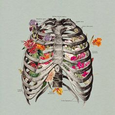 """curso """"Liberando la respiración"""" sábado 17 de mayo 617 626312"""