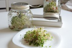 How To Dry Basil, Mason Jars, Herbs, Food, Eten, Canning Jars, Herb, Meals, Spice
