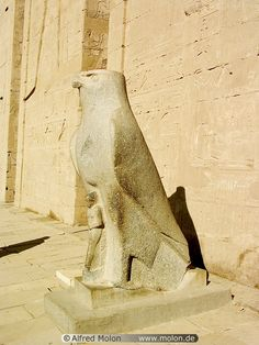 08 Statue of Horus