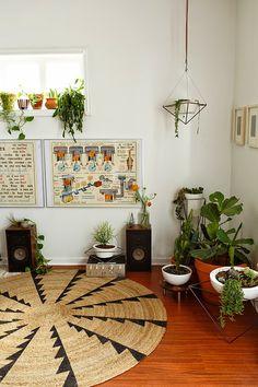 blog de decoração Um lar para Amar: Dicas de como inserir plantas e flores na decoração sem medo de ser feliz.