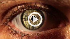 Vidéo > Kezako : peut-on vraiment faire confiance à nos yeux ?