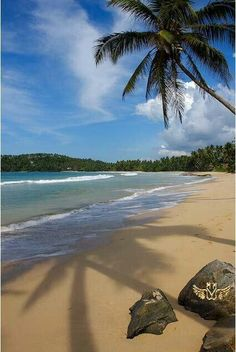 Shri Lanka.