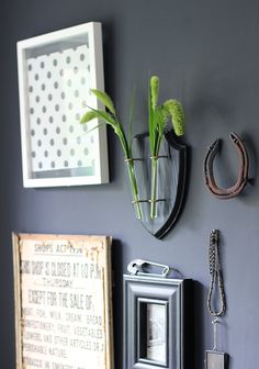 Quirky wall display on a black feature wall