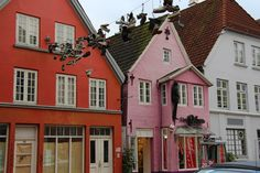 Hanging shoes. Flensburg, Germany