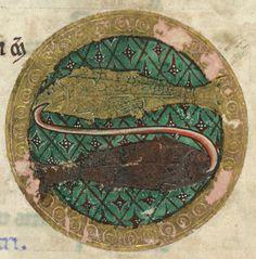 The Hunterian Psalter: Calendar. Zodiac Sign of Pisces.