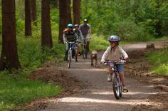Take a family bike ride in the wilderness of Hamsterley Forest with stunning views from higher up in the forest across the Durham Dales its the perfect family day out for more information please visit : http://www.thisisdurham.com/things-to-do/hamsterley-forest-p168851