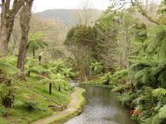 Azores Island.  PORTUGAL
