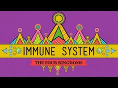 """Crash Course is a YouTube channel that makes school subjects funnier and more interesting. Great for world history and biology students. This video is """"Your Immune System: Natural Born Killer - Crash Course Biology #32""""."""