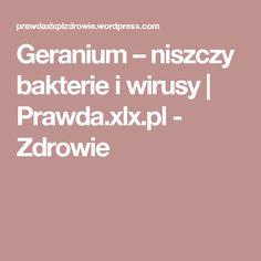 Geranium – niszczy bakterie i wirusy | Prawda.xlx.pl - Zdrowie