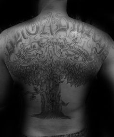 Discover the wonders of kinship and human heritage with the top 59 best family tree tattoo designs. Explore cool ideas with carved names and geneologies. Family Tattoos, Small Tattoos, Tattoos For Guys, Tattoos For Women, Tree Frog Tattoos, Tree Tattoo Arm, Tattoo Life, Dream Catchers, Tree Tattoo Designs