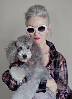 Poodle Dog & Elegant Grey