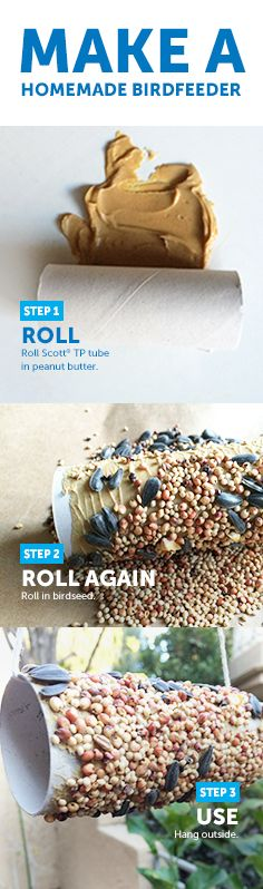 Welcome back our feathered friends. #ScottBrandTip #Craft #BirdFeeder #ToiletPaperTube