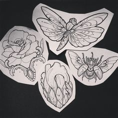 Homework for my next guest at #southinktattoo  #rose #heart #beetle #tattoo #missjuliet