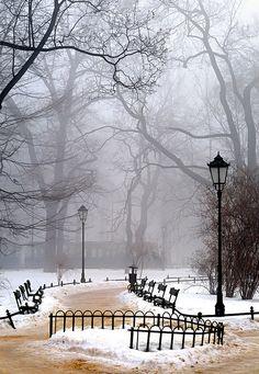 Winter morning fog - Poland  www.liberatingdivineconsciousness.com www.facebook.com/loveswish