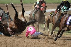 5 Myths the Horse Racing Industry Spreads