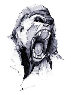 Wild Rage by Phillip Zurmohle