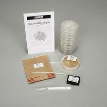 Slime Mold Growing Kit #carolinaextracredit and @Carolina Biological Supply Company.
