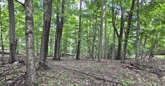 NEW LISTING    15 WOODED ACRES IN COLORFUL FAMOUS BROWN COUNTY   HUNT DEER, FOX AND TURKEY ON YOUR OWN LAND.  PROPERTY AVAILABLE TO BE PURCHASES WITH 5 ACRES NEXT TO IT WITH HOME AND HUGE GARAGE. BLC#21339424 8636 Centerlake Rd, Nineveh, IN 46164, $175,000 For more information, contact Shelly Walters, RE/MAX Ability Plus, 317-201-2601