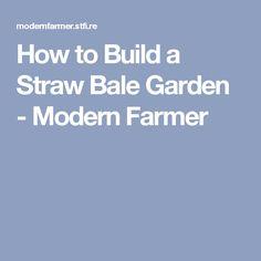How to Build a Straw Bale Garden - Modern Farmer
