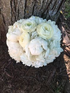 Loved it! Pinned it! A Blooming Envy Design! Sentry World, Stevens Point, WI. White Hydrangea, peony and ranunculus Bouquet.