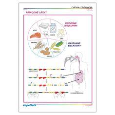 CHÉMIA - organická - Chémia - Prírodné vedy - Učebné pomôcky Map, Location Map, Maps