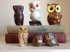 6 vintage owls whooos the handsome one by MellaFina on Etsy, $24.00