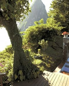 Spread across St. Lucia's lush hillsides, Ladera is a destination for true romance and escape. #Jetsetter