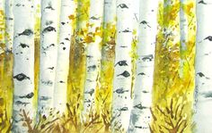 Aspen Forest Landscape Watercolor for Sale 5 x 7 by 6catsart