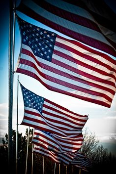 """When we honor our flag we honor what we stand for as a Nation - freedom, equality, justice, and hope."" ~ Ronald Reagan"
