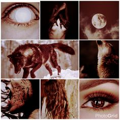 *Sade Abrea-Werewolf. Personality traits:Dramatic, boisterous, sassy, quick-witted, plucky, bold, dictatorial, meddlesome. Witch Aesthetic, Character Aesthetic, Dark Fantasy Art, Dark Art, Werewolf Girl, Lost Pictures, Wolf Book, Wolf Photos, Wonder Woman