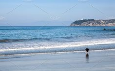 Landscape with sandy beach of Tangie Photos Tangier morocco landscape in Africa from the bay by huertas19