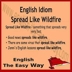 The news spreaded ___________ . 1. like wildfire 2. very fast 3. both  #EnglishIdiom