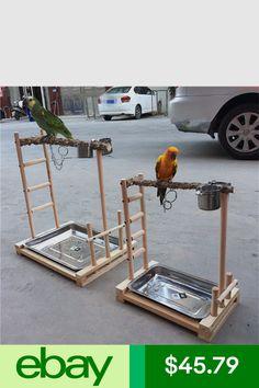 Parrot Perch Diy, Bird Perch, Bird Play Gym, Parrot Play Stand, Conure Bird, Cockatiel Cage, Diy Bird Cage, Diy Bird Toys, Bird House Feeder