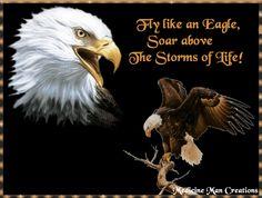 Fly Like An Eagle-
