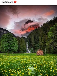 Some Beautiful Pictures, Beautiful Places, Beautiful Scenery, Beautiful Moments, Cadeau Bio, Bol D Air, Landscape Photography, Nature Photography, Switzerland Vacation