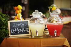 Lemonade stand, my mouth is watering just thinking about it! - Succulent Styled Shoot