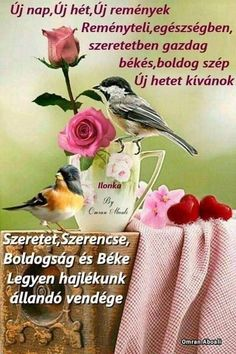 Good Morning, Good Day, Bonjour, Bom Dia, Buongiorno