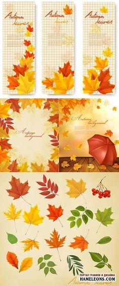 Осенние листья - фоны и баннеры - Векторный клипарт   Autumn leaves vector