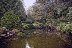 Kubota Gardens by Martha Di Giovanni on 500px