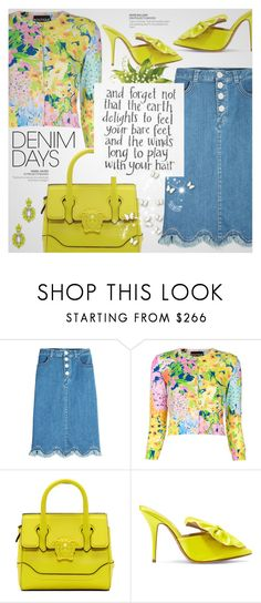 """Jean Dreams: Denim Skirts"" by beautifulplace ❤ liked on Polyvore featuring See by Chloé, Boutique Moschino, Versace, Alexandre Vauthier and Elizabeth Cole"