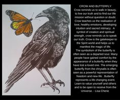 Butterfly and Crow by Lisa Cherie's Art