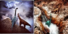 Travel photos are more majestic with dinosaur toys in it