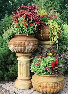 Backyard planters with flowers