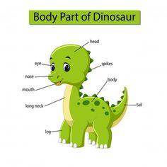 Diagram showing body part dinosaur vector Learning English For Kids, English Language Learning, Teaching English, English Lessons, Learn English, English Fun, Animals Name In English, Ingles Kids, Preschool Phonics