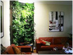 Mur végétal d'appartement. Green wall, vertical garden. Вертикальный сад, зеленая стена