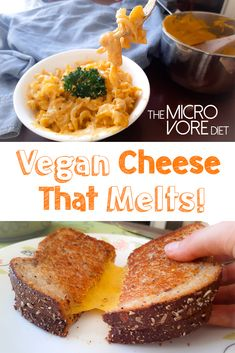 Ooey gooey stretchy vegan cheese that melts!? Let me at it!! Enjoy on pasta and vegan pizza!Ingredients½ cup hemp seeds1 cup water1/2 cup of carrots, chopped a