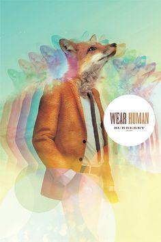 wear human
